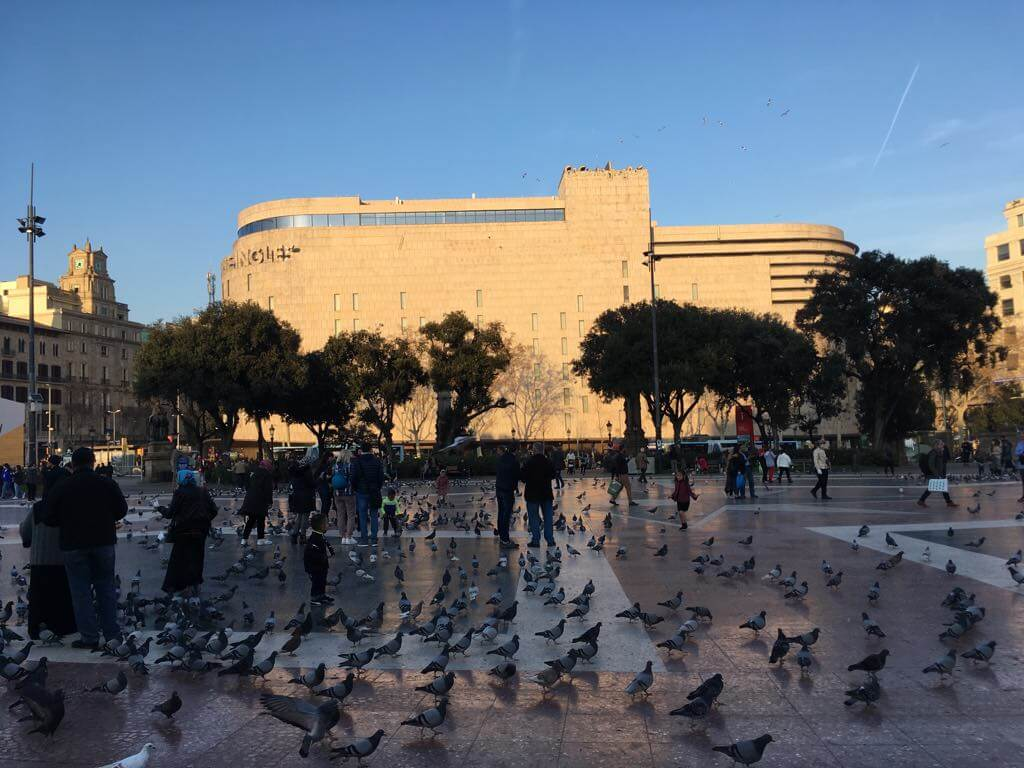 Pigeons and crowds of people in a public square in Barcelona