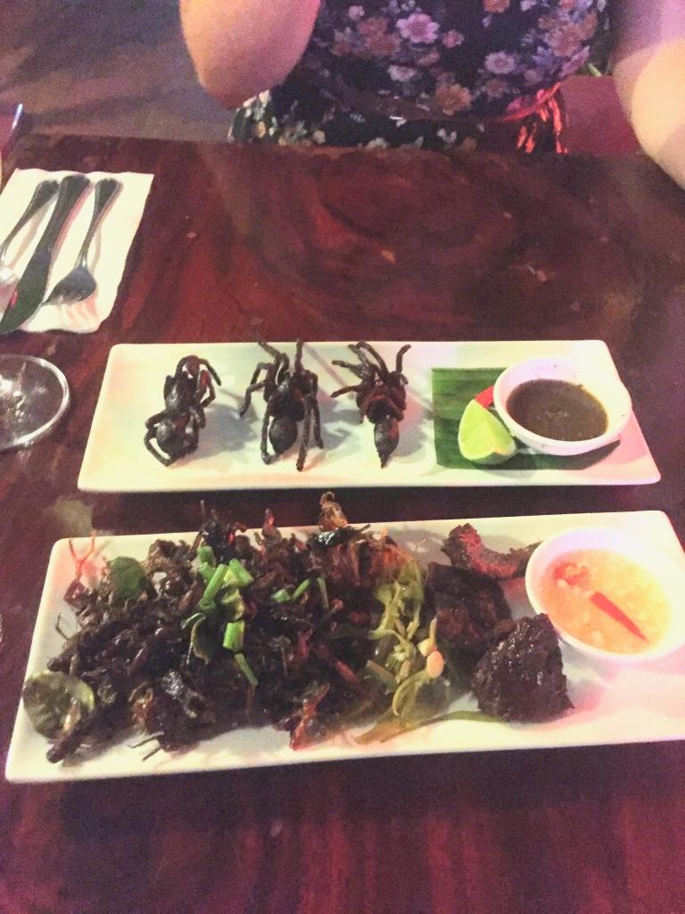 Cambodian food. Tarantulas, crickets, froglets, buffalo jerky.